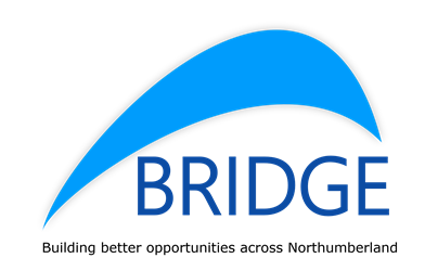 Bridge logo final PNG
